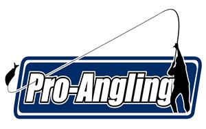 Proangeling Logo